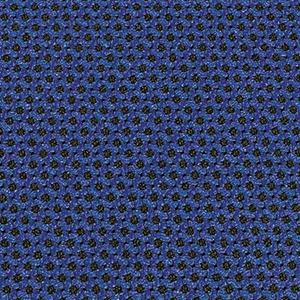 Blue Odyssey Swatch