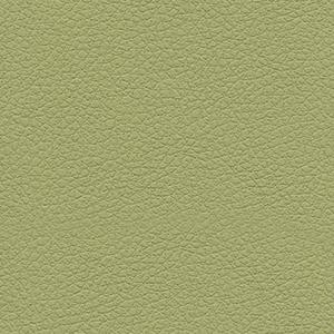 Celery Green Swatch