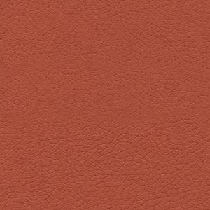Cinnabar Red Swatch