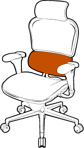 chair with lumbar support
